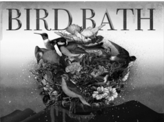 Cash Gotti Bird Bath