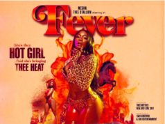 Megan Thee Stallion-Fever-Album Stream