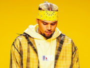Chris Brown Wobble Up